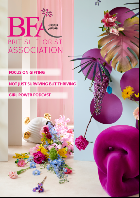 BFA 35 Front cover